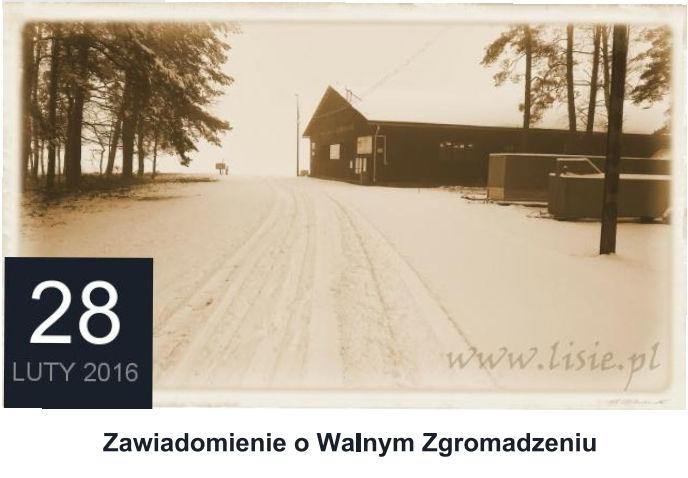 Walne Zgromadzenie  28.02.2016
